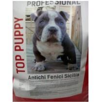 DURACELL PLUS POWER TORCIA D/2 X 2 PZ