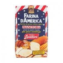 HAG BUSTA G250